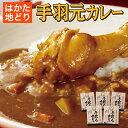 【送料無料】 はかた地鶏カレー (手羽元カレー210g×5)