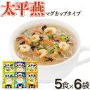 【送料無料】熊本名物 太平燕マグカップサイズ 6種セット タイピーエン 春雨 スープ ヘルシー スープ 白湯 ギフト 贈り物