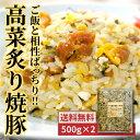 【送料無料】九州産高菜炙り焼豚 500g 2個セット 惣菜