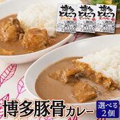 【送料無料】 博多とんこつカレー お試し 2個セット 九州産 牛肉 豚肉 鶏肉 ご当地カレー 180g×2食