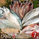 【送料無料】天然鮮魚一夜干しセット 干物 低温熟成