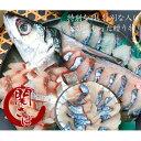 【冷凍発送】【鮮魚】関サバ姿刺身盛り 大1尾【5人前】【送料込】【RCP】[関さば][代引き不可]