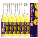 南国特産 ボンタンアメのお酒 6度 500ml 化粧箱入り 6本セット【送料無料】