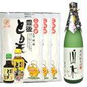 とり天調理セット(小)と特別純米酒山水セット【RCP】