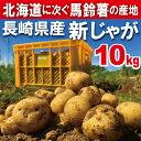 【春じゃが】新じゃが【日本一】じゃがいも長崎県島原産馬鈴薯10kg【鉄腕DASH!】ジャ