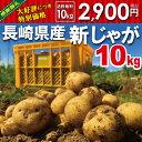 【秋じゃが】新じゃが【日本一】じゃがいも長崎県島原産馬鈴薯10kg【鉄腕DASH!】ジャガイモ ばれ