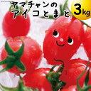 【完熟ミニトマト】アイコトマト3Kg【送料無料】