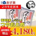 (28年産新米)(減農薬)(特別栽培米)つやおとめ 5kg×2袋【10kg】(米)(お米)(送料無料)