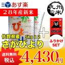 (28年産新米)ふりかけセット 佐賀県産さがびより 5kg×2袋 【10kg】(米)(お米)(送料無料)