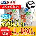 【無洗米】(28年産新米)(佐賀県産)さがびより5kg×2袋 【10kg】(米)(お米)(送料無料)