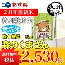 【無洗米】(28年産新米)熊本県産特別栽培米森のくまさん 5kg(森のくまさん)(米)(お米)(おにぎらず)(送料無料)