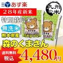 【無洗米】(28年産新米)熊本県産特別栽培米森のくまさん5kg×2 【10kg】(森のくまさん)(米)(お米)(おにぎらず)(送料無料)