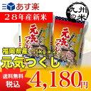 (28年産新米)(減農薬)(福岡県産)元気つくし5kg×2袋【10kg】(米)(お米)(送料無料)