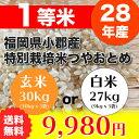 【玄米】(28年産1等米)福岡県小郡産特別栽培米 つやおとめ(送料無料)(玄米30kg 又は 白米27kg)