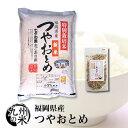 (送料無料)福岡県産つやおとめ5kg+米ぬかふりかけ(35g)(ショップ・オブ・ザ・イヤー2018ジャンル賞受賞)