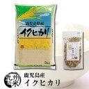 (送料無料) 【無洗米】(令和2年産新米)+米ぬかふりかけ(35g) 鹿児島県産イクヒカリ 5kg
