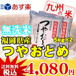 【無洗米】(27年産)(減農薬) つやおとめ 5kg×2袋 【10kg】(特別栽培米)(米)(お米)(送料無料)(05P26Mar16)