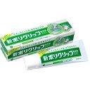 《A》(入れ歯用接着剤) アース ポリグリップ無添加 40G【D】