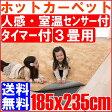 【送料無料】人感・室温センサー付 ホットカーペット 本体 3畳用(185x235cm) ホットカーペット 電気マット 床暖房カーペット アイリスオーヤマ JSHC-3H4
