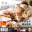【ポイント5倍&2個以上購入で300円OFF】着る毛布 ロン...
