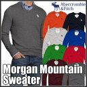 アバクロンビー&フィッチ 正規 アバクロ Abercrombie&Fitch メンズ Vネックセーター:Morgan Mountain Sweater《8色》