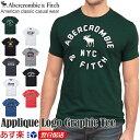 アバクロ 正規品 ロゴデザイン 半袖 Tシャツ メンズ 半袖