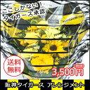 阪神タイガース公認アレンジメント 3,500円タイガース公認ラッピングで花ギフト寅キチさん感激です  ...