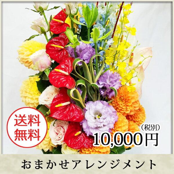 ポイント10倍【送料無料】季節のお花おまかせ花束...の商品画像