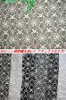 60ローン刺繍レース生地(6色)