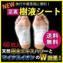 【メール便送料無料】【NEW 足裏 樹液シート 携帯用パック(30足・60枚入)...