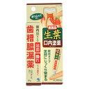 【第3類医薬品】小林製薬 生葉口内塗薬 20g