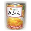 食品 - 中国産みかん M3号缶 350g