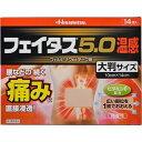 【第2類医薬品】フェイタス5.0 温感大判 14枚【セルフメ...