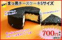 ★訳あり・Sサイズ★まっ黒チーズケーキ【おのし・包装・ラッピング・手提げ袋不可】