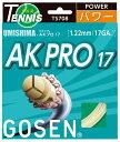 ゴーセン(GOSEN) AKプロ17
