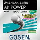 ゴーセン(GOSEN) AKパワー16