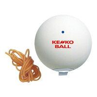 【10個セット】ナガセケンコー(KENKO) ケンコーセルフテニス スペアボール テニス 器具・備品 TSTBVの画像