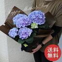 ◆◆母の日◆◆送料無料/花/アレンジメント/花束/ギフト/プ...