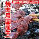 焼肉・BBQ用!国産牛ハラミ1kg 送料無料 国産 牛ハラミ 1kg 250gパック×4袋