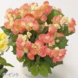 人工植物 【リーガスベゴニアブッシュ】 40cm AS-RB04 P-ピンク