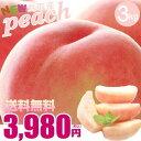 桃 鳥取県産 とっても美味しい桃 最高級(赤秀)ご贈答用 3キロ (6〜8玉) 鳥取かんど モモ もも 送料無料
