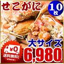 セイコ蟹 (カニ 蟹 かに)10枚入り!セコガニ(親がに/せいこ蟹/せこがに/せこ蟹/せいこがに/松葉がにの雌)