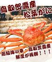 松葉蟹(カニ 蟹 かに)8人前3キロ以上 訳あり わけあり(松葉ガニ/松葉蟹)約3キロ詰(大、中サイズ6〜10枚入)