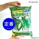 観葉植物の土 5L 失敗しない。失敗させない。ピンピン育つ 専用用土シリーズ ウンベラータ ガジュマル