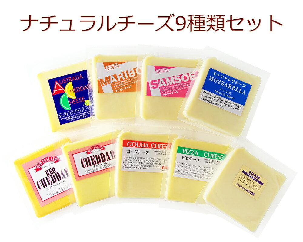 ナチュラルチーズ 9種類セット 各200gゴーダ...の商品画像