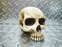 スカルバンク スカルの貯金箱 頭蓋骨 ガイコツ 骨型 オブジェ オシャレ ドクロ 髑髏 ハロウィン コインバンク インテリア