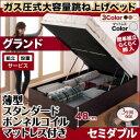 組立設置 跳ね上げ式ベッド 簡単組立 らくらく搬入 ガス圧式 大容量 跳ね上げベッド Mysel マイセル 薄型スタンダードボンネルコイルマットレス付き 縦開き セミダブル 深さグランド(代引不可)