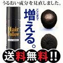 増毛スプレー【送料無料】newヘアフォロー ブラック【正規品...