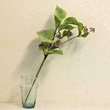 フィールドレースフラワーL(W0108)【造花 レースフラワー インテリア 観葉植物 人工観葉植物 グリーン リース】