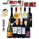 【毎日1名様にワインが当たる!?】復刻【第3弾】イタリア政府公認ソムリエとあのイタリアワインの怪人のタッグ【赤ワイン中心】ワインセット 10州飲み比べセット 神の雫金賞ワイン多数 ワインセット EPA
